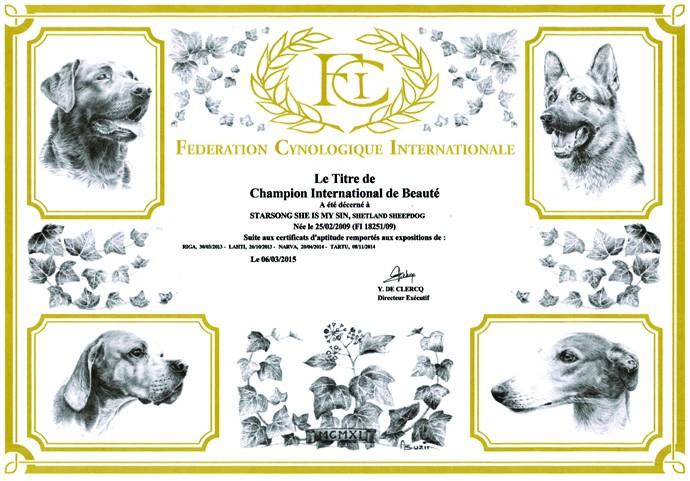 sylvi-cib-diploma